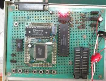 AKI80_512.jpg